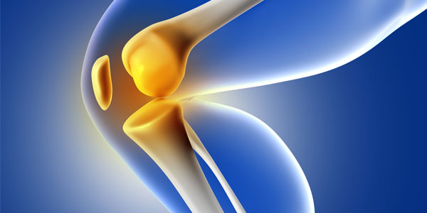 Orthopedic Surgeons near Celebration, FL